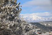 image of blanket snow  - A snow blanket cover the La Plata Mountains in Durango - JPG