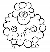 vector sheep isolated on a white background