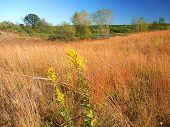 Kettle Moraine Prairie Landscape Wisconsin