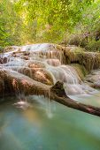 Deep forest water falls in National park