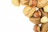 Almonds, Walnuts, Brazil Nuts And Hazelnuts In Shells