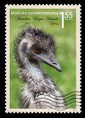 Post Stamp. Emu