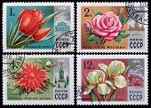Post Stamp. Flowers