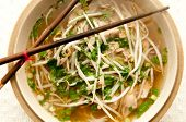 vietnamese pho soup, an ethnic meal of chicken soup