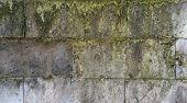 Wall Texture Of Gray Greenish Mossy Stone