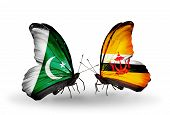 Two Butterflies With Flags On Wings As Symbol Of Relations Pakistan And Brunei