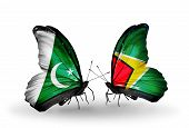 Two Butterflies With Flags On Wings As Symbol Of Relations Pakistan And Guyana