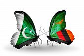 Two Butterflies With Flags On Wings As Symbol Of Relations Pakistan And Zambia