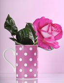 Beautiful Pink Rose Gift In Polka Dot Coffee Cup On Feminine Pink Background.