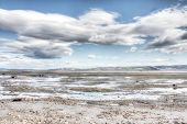 stock photo of arctic landscape  - Summer arctic landscape with lake and mountains - JPG