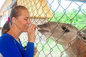 Young attractive woman feeding lama