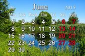 Calendar For June Of 2015 Year With Image Of Forest Lake
