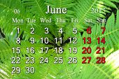 Calendar For The June Of 2015 On The Background Of Fern
