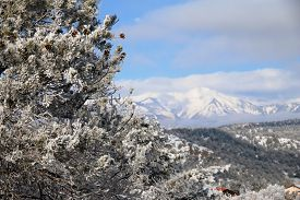 pic of blanket snow  - A snow blanket cover the La Plata Mountains in Durango - JPG