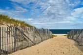 stock photo of cape-cod  - Path way to the beach at Cape Cod - JPG
