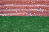 picture of lawn grass  - lawn of green grass and brick wall - JPG