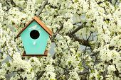 foto of nesting box  - Decorative nesting box on bright background - JPG
