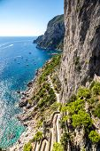 pic of twisty  - Patch on a Capri island in a beautiful summer day in Italy - JPG