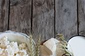 picture of milk products  - Tzfat cheese milk cottage cheese wheat and oat grains on old wooden background - JPG