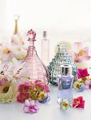 picture of perfume  - perfume and aromatic oils bottles surrounded by fresh flower - JPG