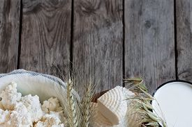 pic of oats  - Tzfat cheese milk cottage cheese wheat and oat grains on old wooden background - JPG