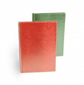 picture of green snake  - red and green books in leather cover on a white background Snake Cover - JPG