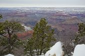 Grand Canyon in Winter at Yavapai Point, AZ
