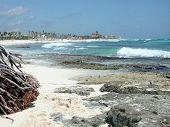 A Tropical Beachscape