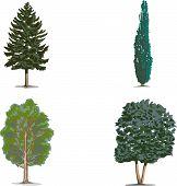 Tree.eps