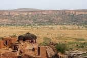 image of dogon  - A village of Dogon tribe overlooking a valley in Mali - JPG