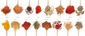 stock photo of garam masala  - gorgeous collection of 16 spices on wooden spoons  - JPG
