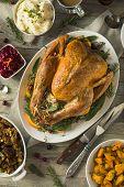 Organic Free Range Homemade Thanksgiving Turkey poster