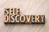 self discovery word abstract in vintage letterpress wood type printing blocks poster