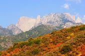 Sunlit Mountain Top