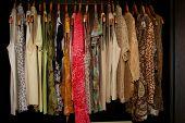 Women'S Pretty Shirts Hanging In Wardrobe Closet