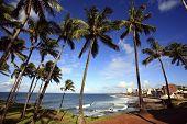 Barra Beach  Salvador Of Bahia