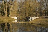 Bridge in the Catherine park