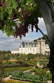 Villandry Castle And Gardens, France