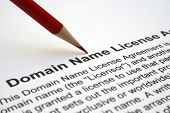 Domain Name License Agreement