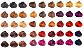Hair Palette Dyed Different Colors. Hairstyle Wig Tints Set For Beauty Industry. Isolated Background poster