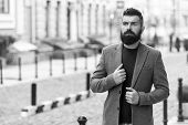 Taxi Please. Businessman Catching Taxi While Standing Outdoors Urban Background. Man Bearded Hipster poster