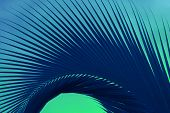 Abstract Pop Art Surreal Style Deep Blue Palm Tree Leaf On Mint Green Background poster