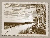 Vintage Postcard - Coastline at Baltic Sea