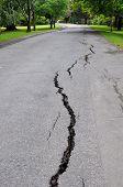 Christchurch Earthquake - Cracks In Mona Vale