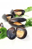 Mussels With Flat Leaf Parsley