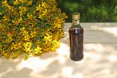 Bunch Of St. Johns Wort Blossoms And A Bottle With St. Johns Wort Oil poster