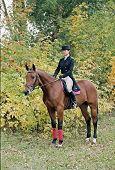 Girl In Riding-Dress Horseback Riding Comes Along