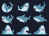 Ocean Shark Mascot. Scary Sharks Animals, Smiling Jaws And Swimming Shark. Underwater Marine Monster poster