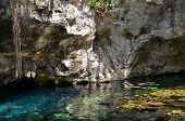 Natação em Gran Cenote, Tulum, Mexico