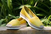 A Pair Of Yellow Espadrilles On A Green Background. Espadrilles On A Background Of Green Grass. poster